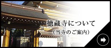 徳蔵寺について